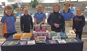 Mosman Girl Guides North Sydney-Activities for Youth Mosman